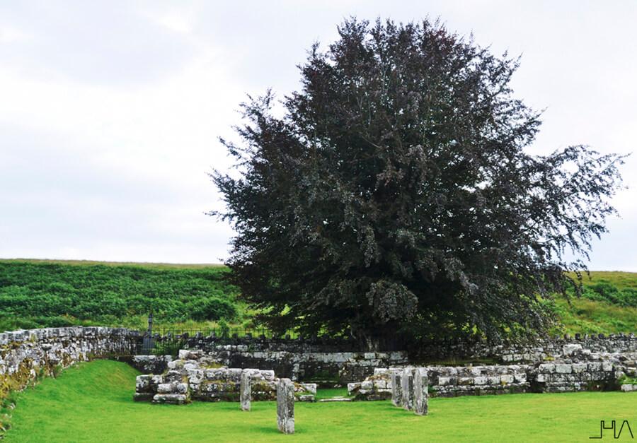 hermitage-castle-scotland-borders 25